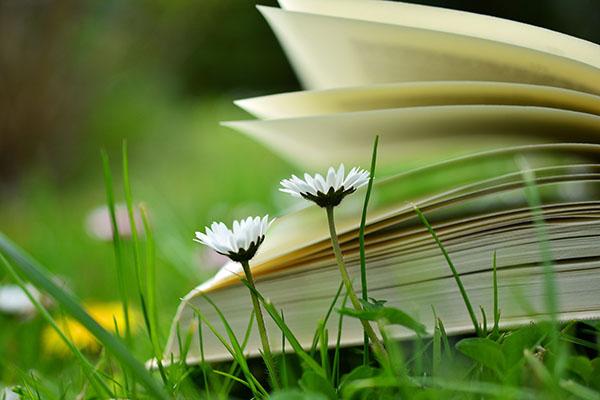 Cảnh vật tự nhiên - Đề tài của nhiều tác phẩm Văn học